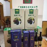 广西哪里有正宗桑果酒批发-广西国康壹号桑果酒招商热线/厂家批发价格