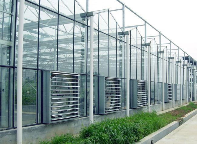 阳光板温室 玻璃温室 玻璃大棚