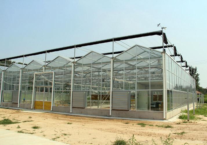青岛玻璃温室 青州玻璃温室 玻璃温室施工 玻璃温室大棚 玻璃温室