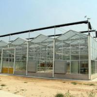 青岛玻璃温室 青州玻璃温室 玻璃温室施工 玻璃温室大棚 玻璃温室 玻璃温室连栋大棚