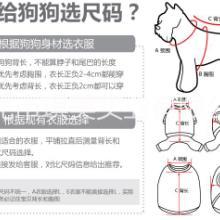 东莞宠物服装|宠物服装专业生产定制厂家|趣逗派