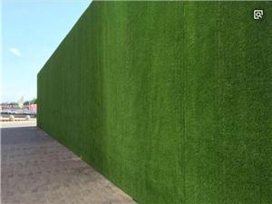 绿化假草皮围墙 人造草皮围挡图片