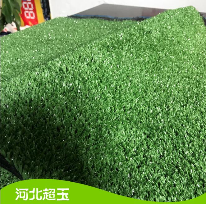 3cm加筋抗老化人造草坪 人造草坪 人造草坪价格 人造草坪公司 人造草坪厂家 人造草坪商铺