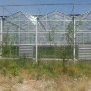 银川移动温室图片