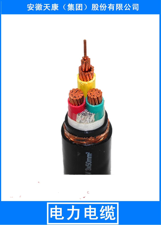 长期供应电力电缆厂家,安徽天康电力电缆集团,安徽专业生产电力电缆厂家