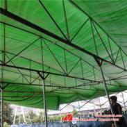 帆布活动帐篷图片