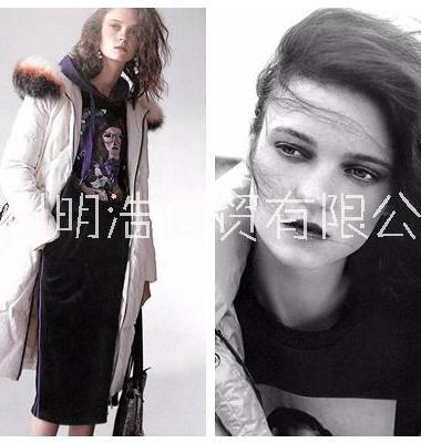 艾利欧品牌女装加盟图片/艾利欧品牌女装加盟样板图 (1)