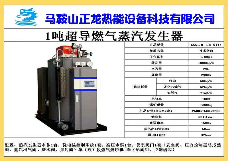 燃气蒸汽发生器100公斤