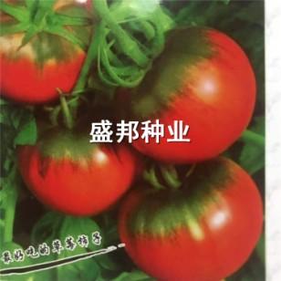 铁皮柿子图片