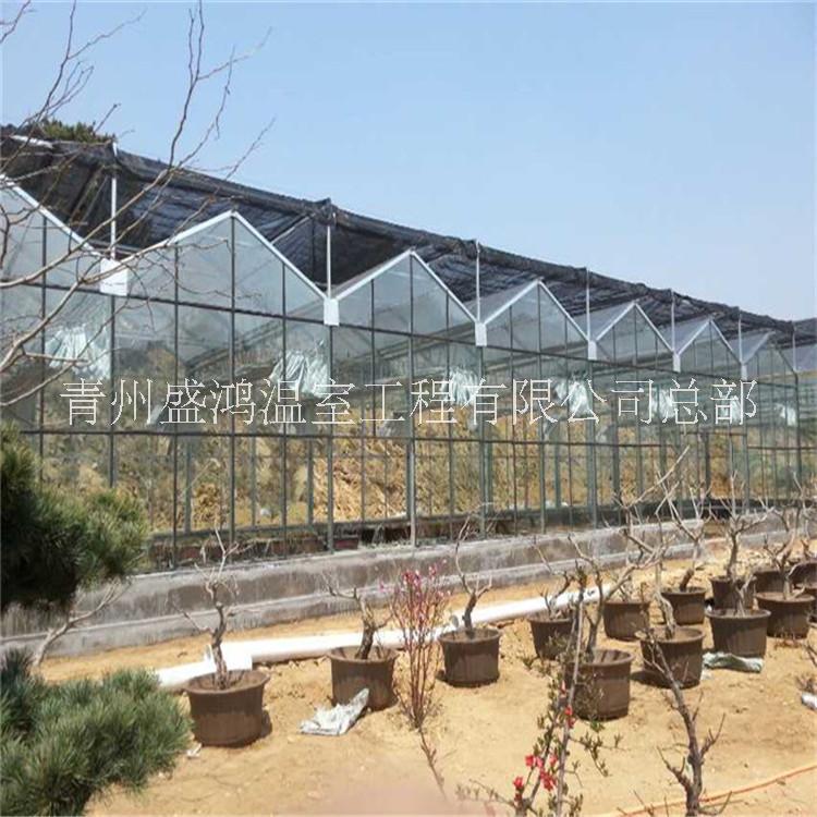 山西玻璃温室多少钱一平米