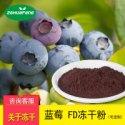 FD冻干蓝莓粉图片
