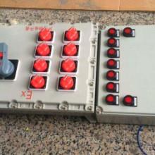 防爆照明动力控制配电箱 仪表防爆电箱防爆箱电源控制箱铸铝 定做图片