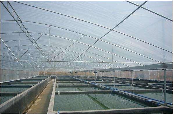 水产养殖温室 养殖温室 农业温室 大跨度温室