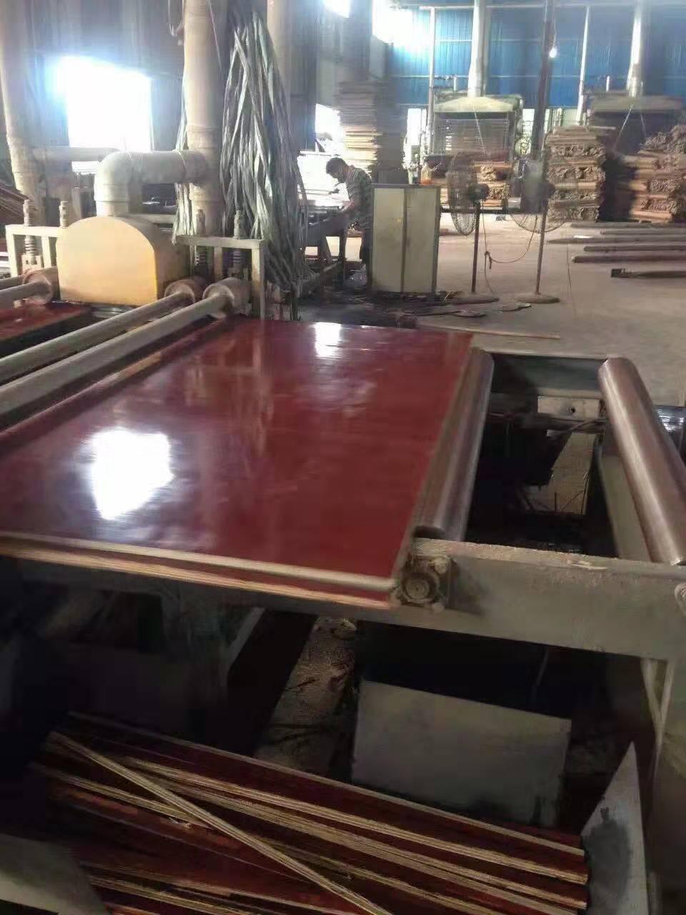 钦州市建筑工程塑料模板价格 建筑工程塑料模板批发  广西塑料模板