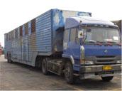桂林到抚州物流专线 桂林到抚州物流公司 桂林到抚州货物运输批发