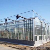 玻璃温室  玻璃温室厂家直销  供应玻璃温室
