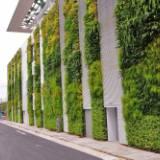 室外植物墻價格 室外植物墻哪家好 廣東室外植物墻